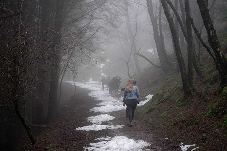 People walk down a snowy trail in the forest in Ireland.